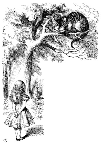 Footnotes: The Cheshire Cat